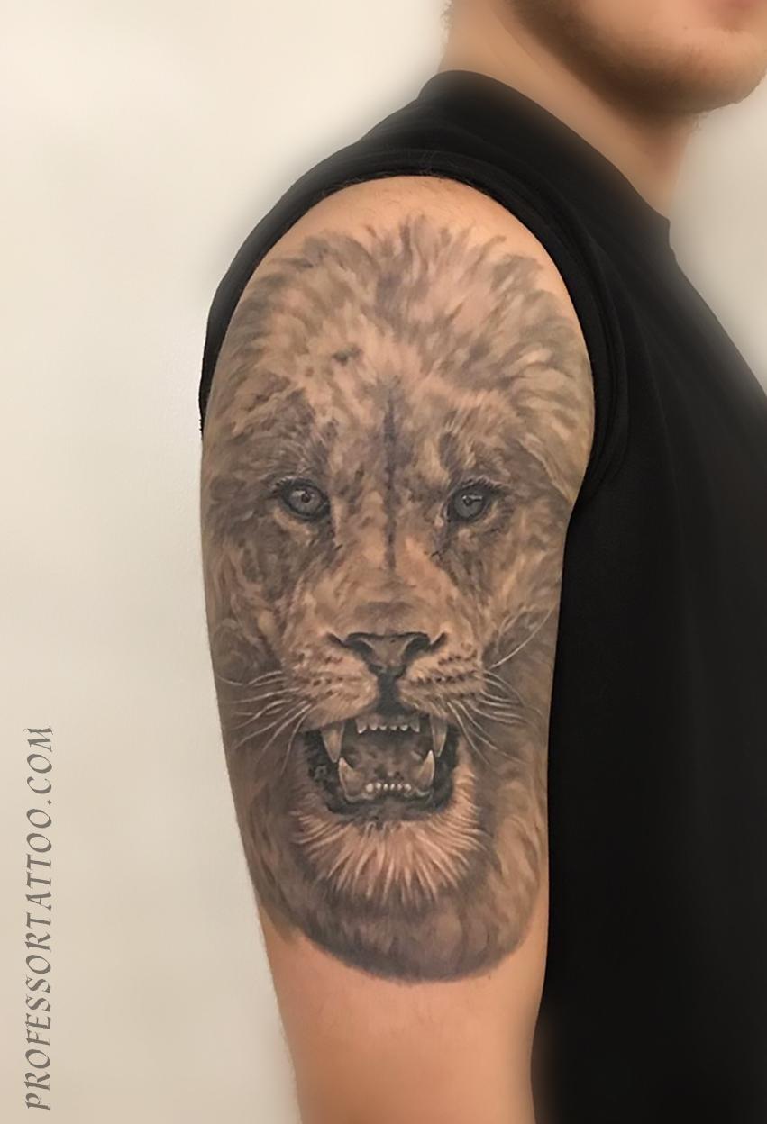 Тату льва